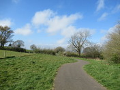 Along the footpath between Lower Halsdon Farm and the A376 road