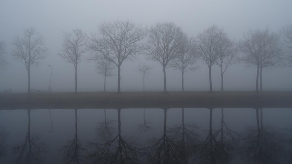 Rustig en mistig weer vanochtend in Heerenveen