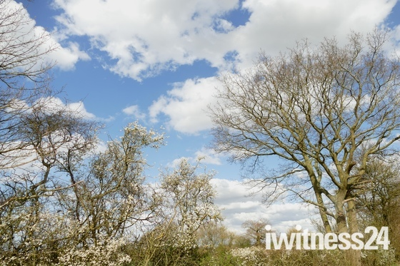 Sunny day in Suffolk.