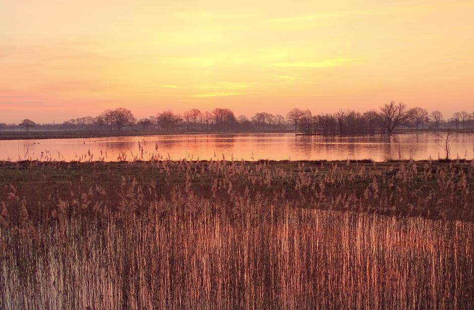 Natuurgebied Dakhorst bij Wierden vanochtend vroeg! 08-04-2020
