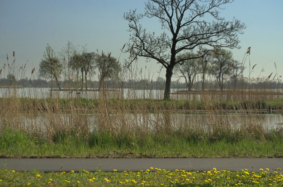Het is heel stil op een fietspad bij het Reeuwijkse plassen gebied!