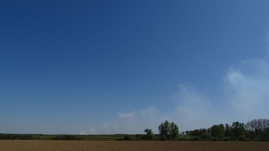 Natuurbrand Meinweg