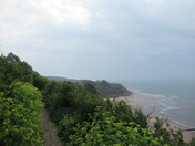 A view towards Orcombe Point