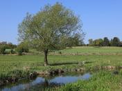 Bowthorpe Southern Park