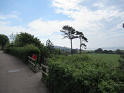 Looking downwards towards the Maer, from Madeira Walk