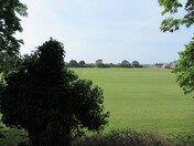 A quiet cricket field during lockdown