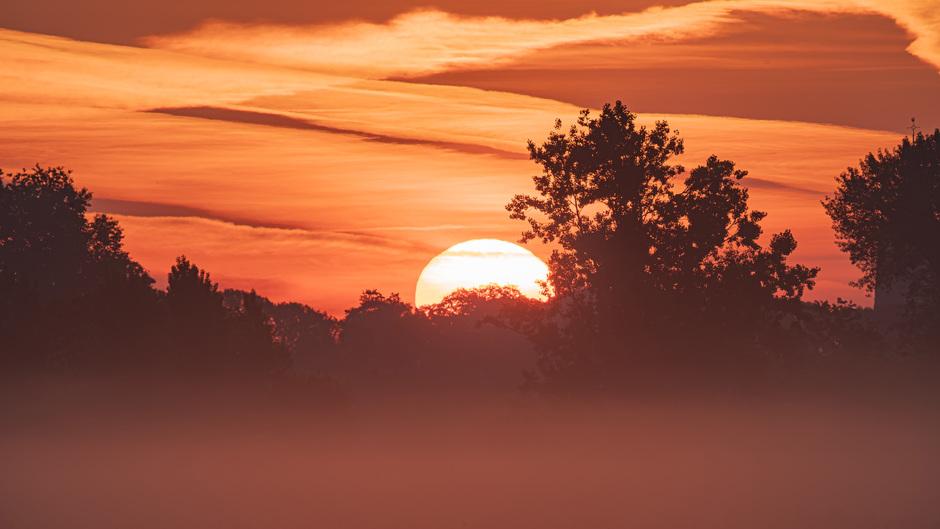 Opkomende zon in Heukelum