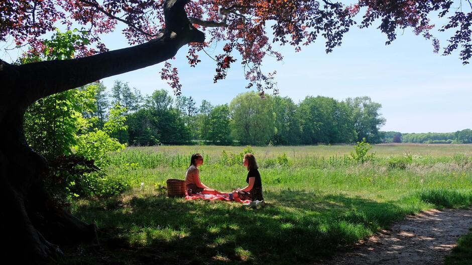 En hier helemaal geen drukte: picknick langs de Reest bij Dickninge