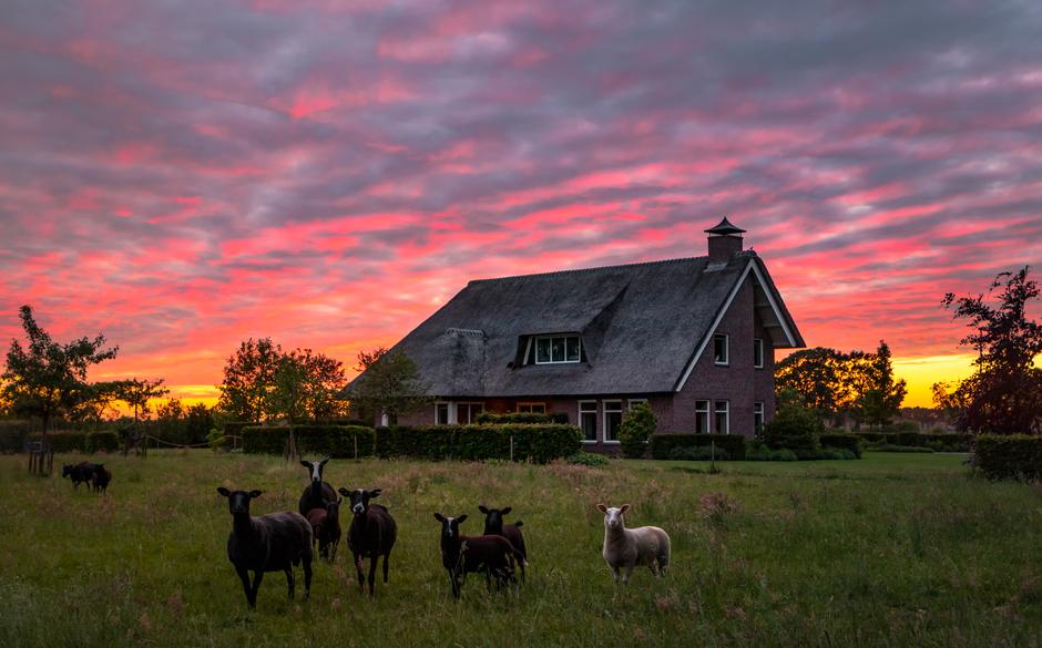 Boerderij in zonsondergang