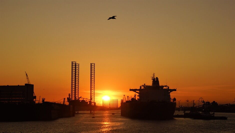 mooie zonsopkomst en helder met meeuw  12 gr matige wind