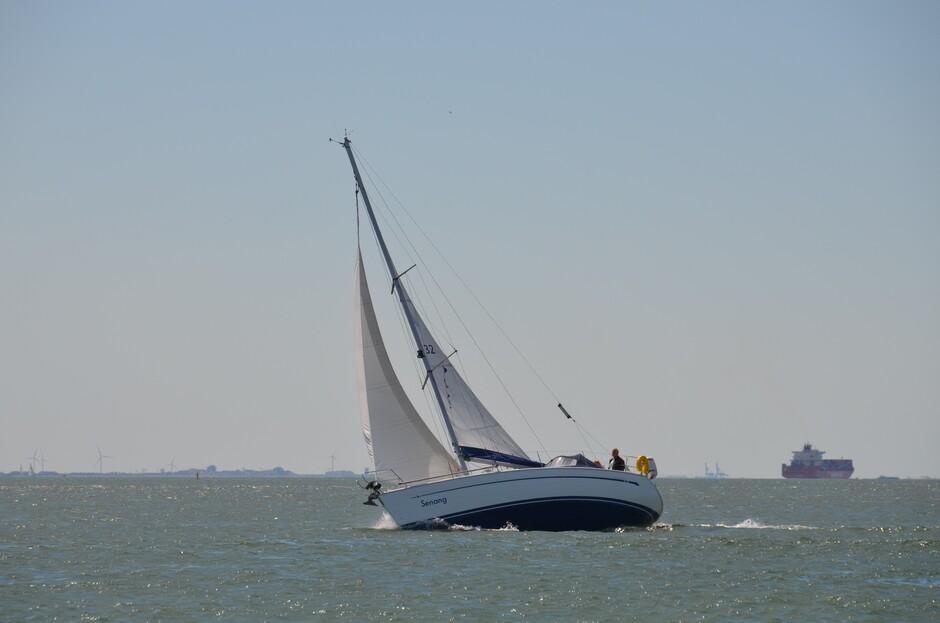 Harde wind aan de Zeeuwse kust