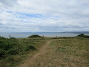 A view across the sea and South Devon coast from the SW footpath