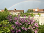 Double rainbow from our rear garden