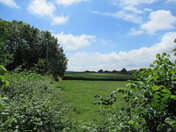 Looking across the fields from Ottery St, Mary.
