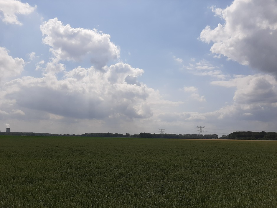 Vanmiddag nog grijze wolken