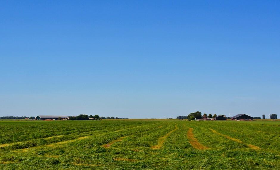 Grasland maaien kan mooi met dit weer