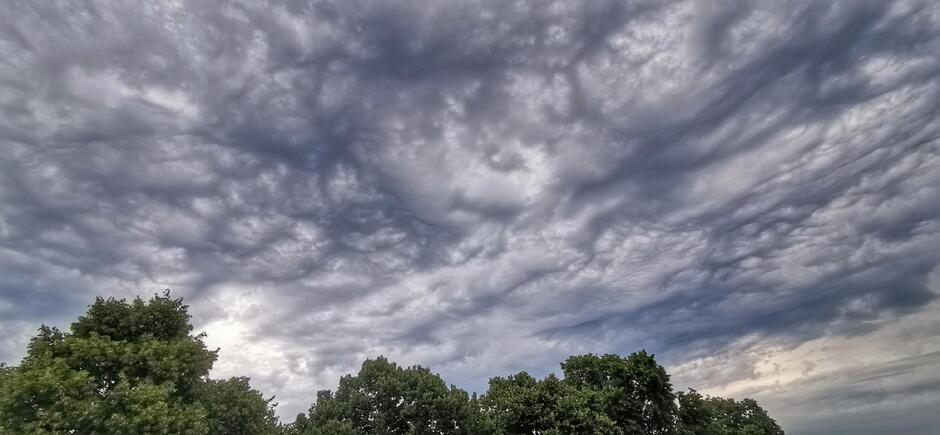 Heerlijk luchtig nu boven Doornenburg