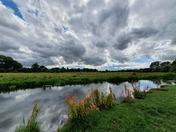 Marston Marshes