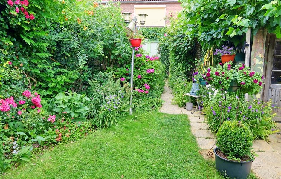 Tuin opgeknapt van het veelvuldige regenwater vorige week