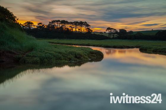 River Otter Estuary