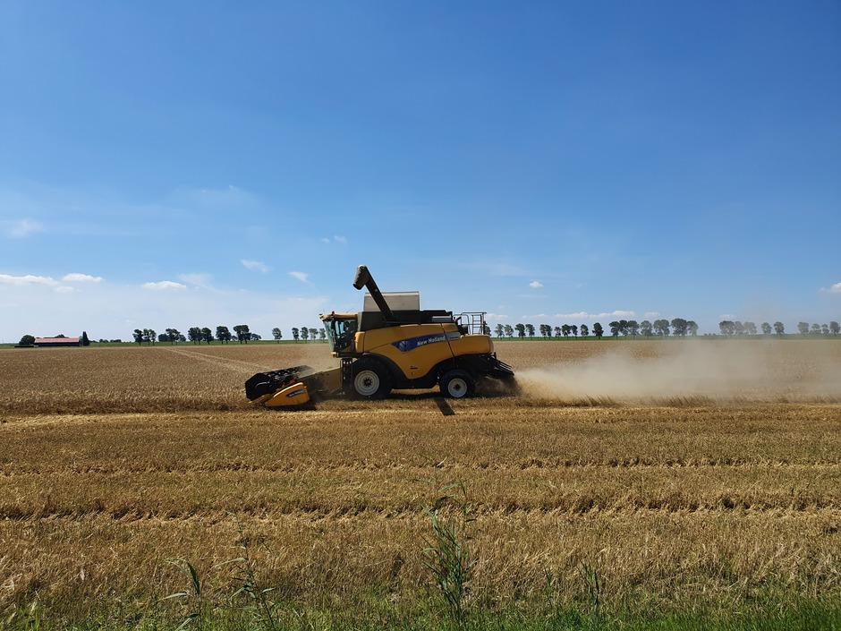 Het graan komt van het land.