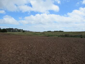 The Maer Nature Reserve, Exmouth