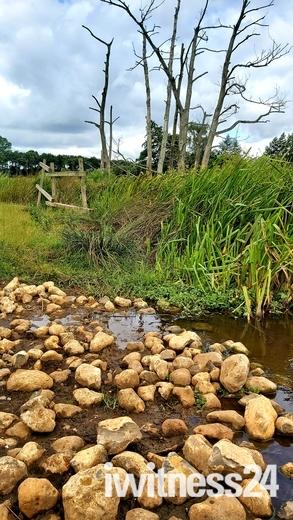 Norfolk country walks