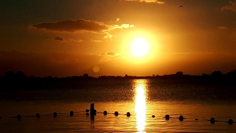 zonsopkomst Roelofarendsveen