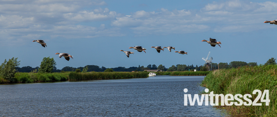 On the River Thurne