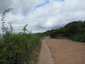 """Along the """"East Devon Way"""" footpath by the Exe Estuary"""