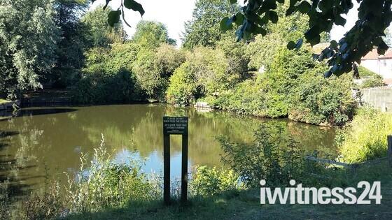 Westleton Village Pond