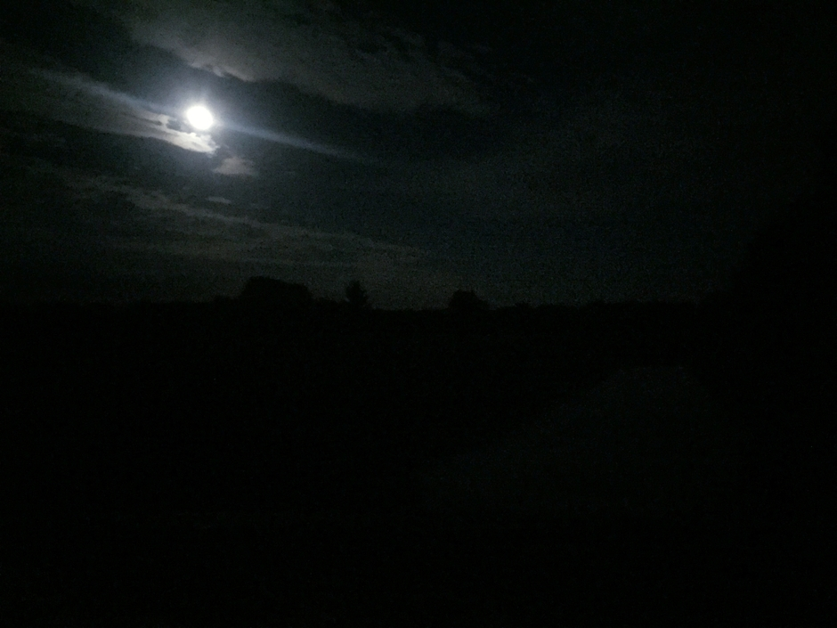 Into the dark of toch niet