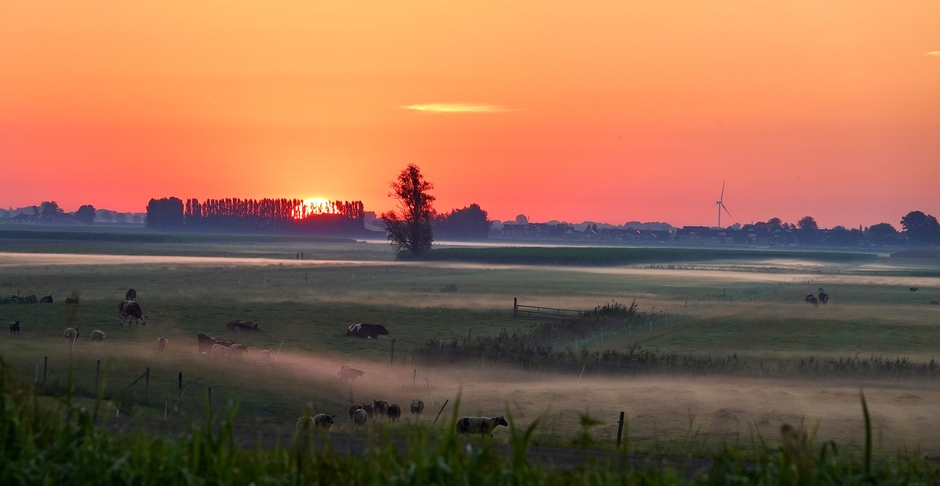 Tropische zonsopkomst