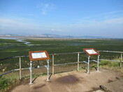 Along the East Devon Way footpath, by the Exe Estuary