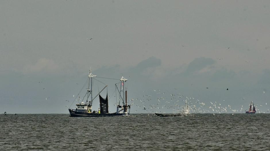 Vissersboot.. (vanaf de Houtribdijk)