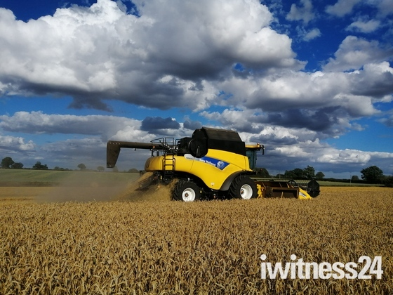The Suffolk Harvest