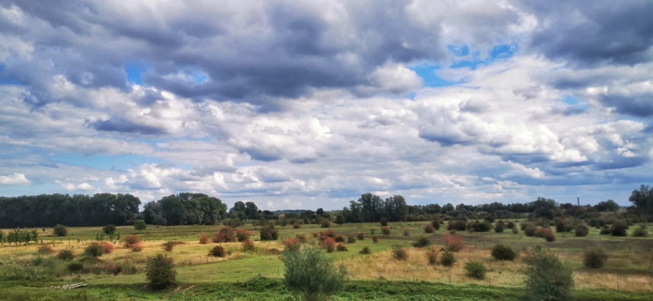 Kleurrijk in de natuur en in de lucht vandaag