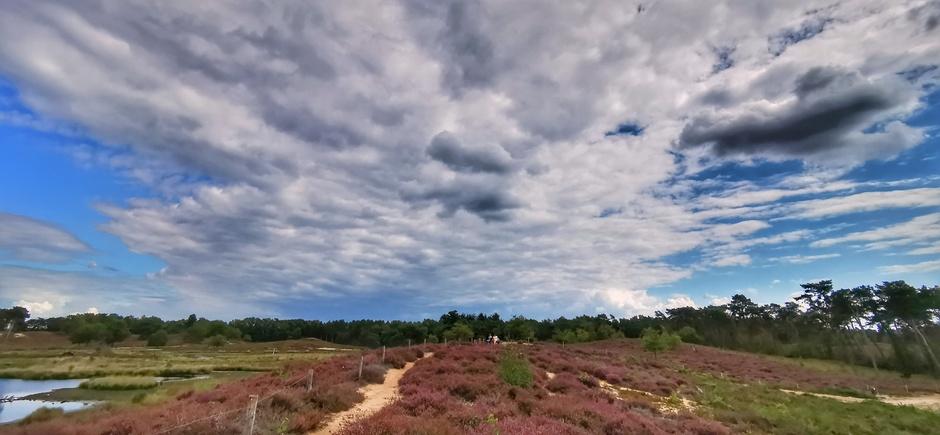 Wolken, blauw en mooie heide vanmiddag