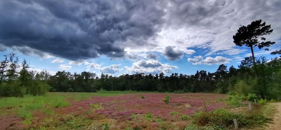 Wolken, blauw en mooie natuur vanmiddag