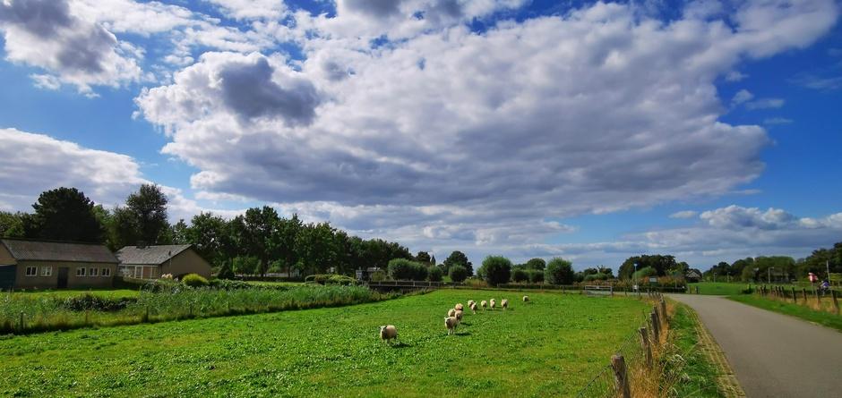 Mooi weer met wat (schaapjes) wolken vandaag