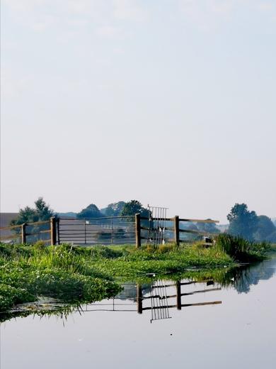 Waveney River