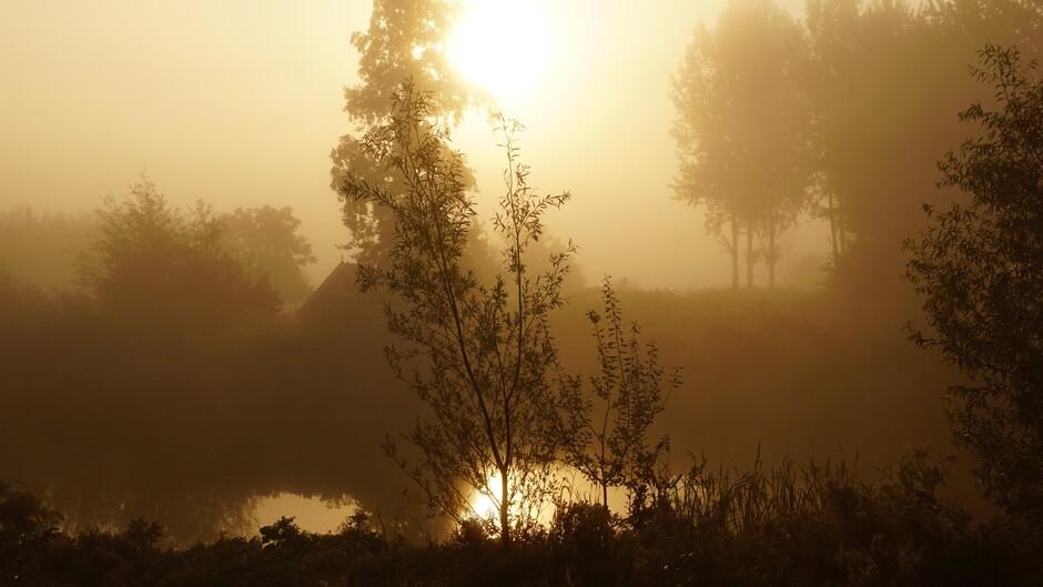zonsopkomst en mistig 50 meter zicht 12 gr 08.35 uur