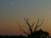Sunset at Carlton Marsh.21-09-2020