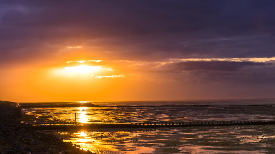 zonsopkomst op het wad