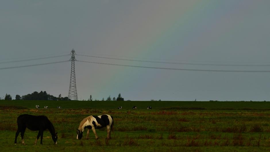 Lichte regenboog