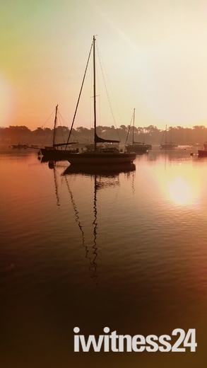 Sunny Sunrise