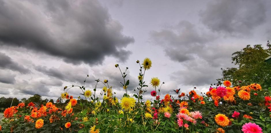 Wolken en kleur vanmiddag