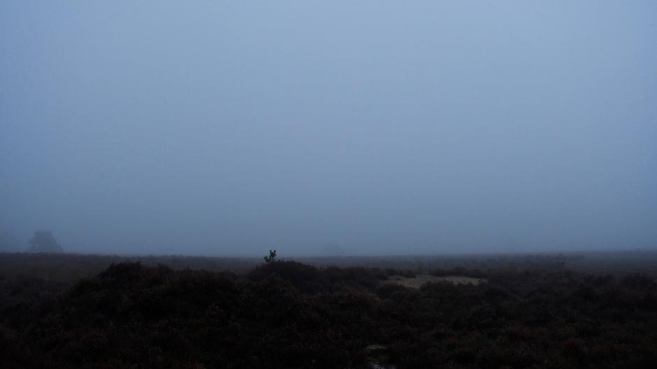 Mist op de heide (08.15 uur)