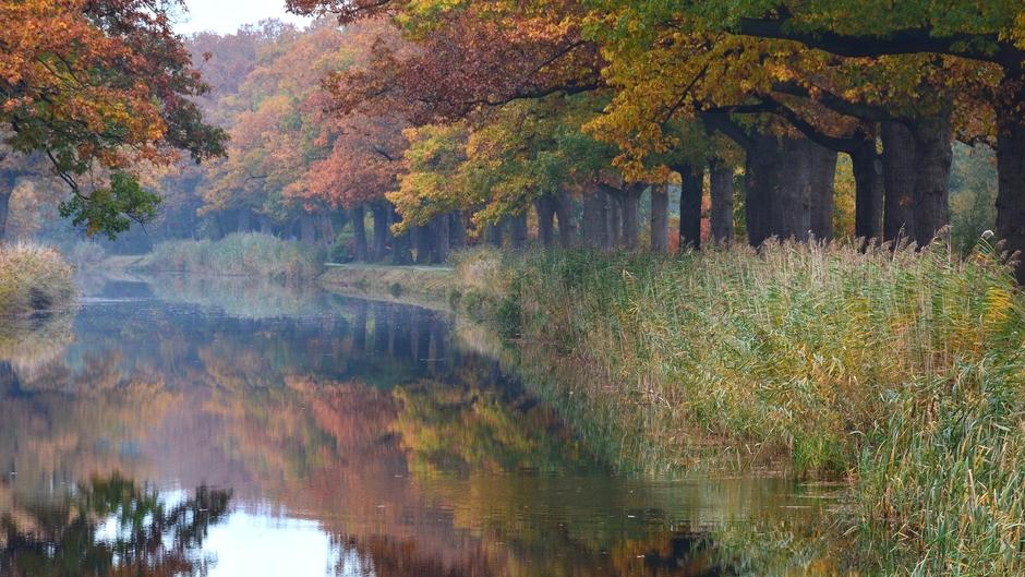 Herfstkleuren langs het Apeldoorns kanaal