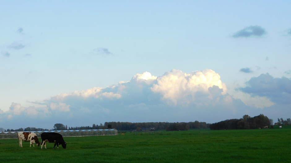 De laatste blauwe lucht van de dag
